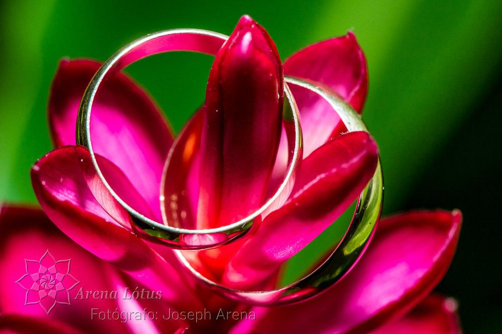 casamento-wedding-ligia-geison-joseph-arena-lotus-arenalotus-fotografo-photographer-fotografia-photography-008