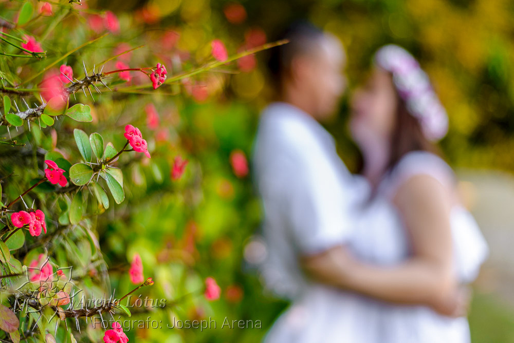 ensaio-pre-casamento-wedding-caroline-bruno-joseph-arena-lotus-arenalotus-fotografo-photographer-fotografia-photography-014