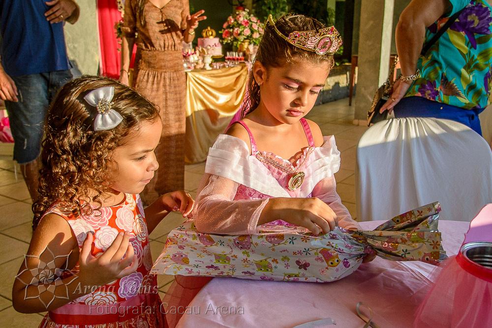 aniversario-birthday-festa-party-criança-child-lara-joseph-arena-lotus-arenalotus-fotografo-photographer-fotografia-photography-005