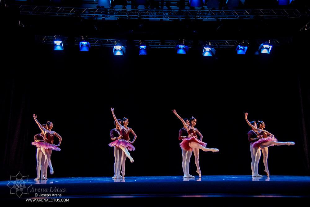 2017-11-03_3º Atelier Internacional SPCD_0182